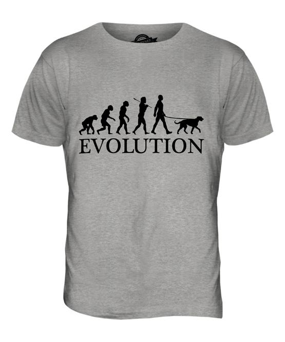 IRISH WOLFHOUND EVOLUTION OF MAN MENS T-SHIRT TEE TOP DOG LOVER GIFT WALKER