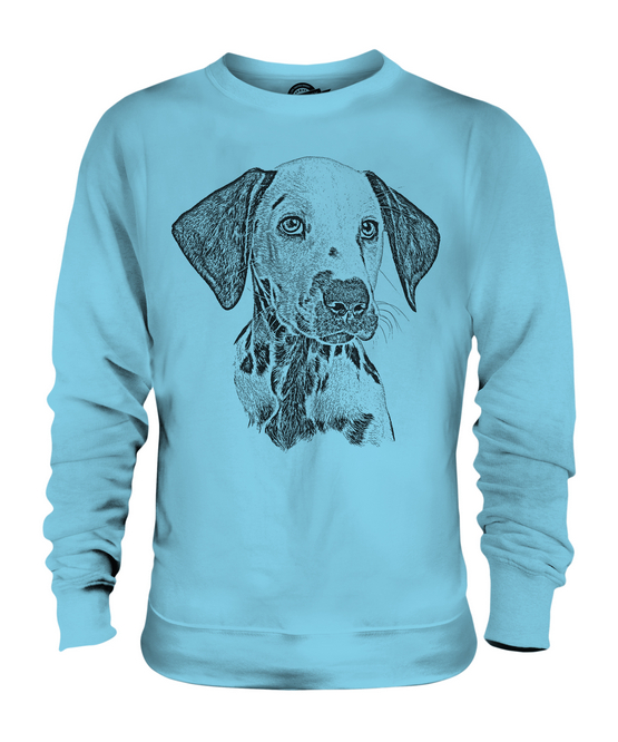 DALMATION SKETCH UNISEX PRINTED SWEATER GREAT TOP GREAT SWEATER GIFT FOR DOG LOVER SPOTTED 4d7937